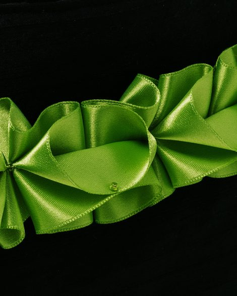 Detail of lime ribbon trim